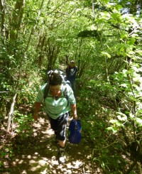 Woodland walk Cumbria, Orangebox web designer, Anne-Marie and friends