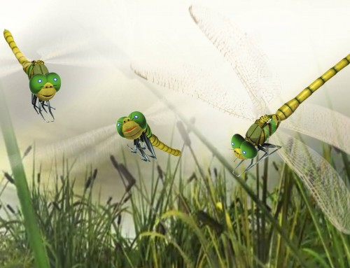Dragonfly Character Illustration Vector Graphics Animation Web Video