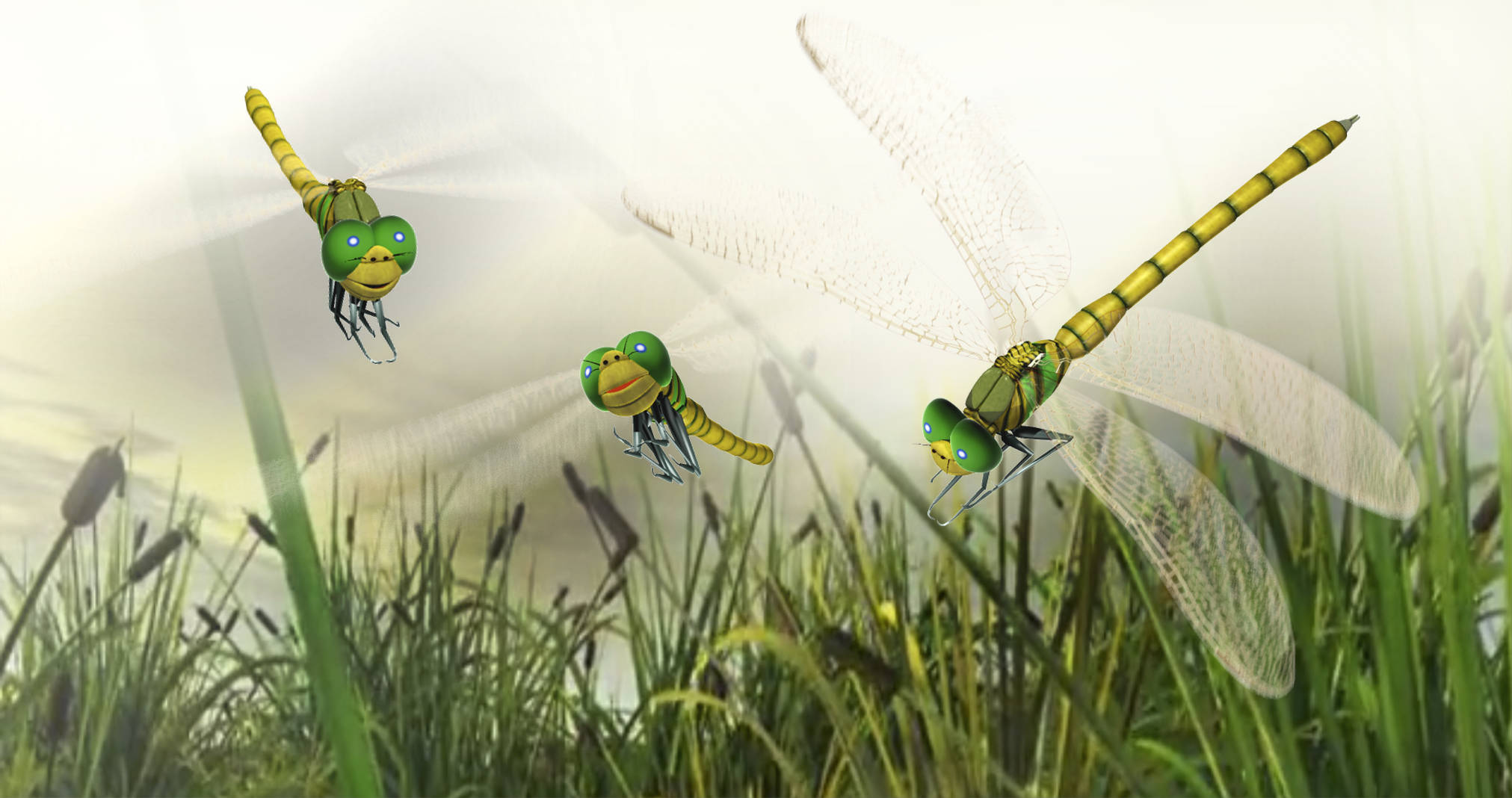 dragonfly-3d-animation-character-web-video-production-mike-martin-lancashire